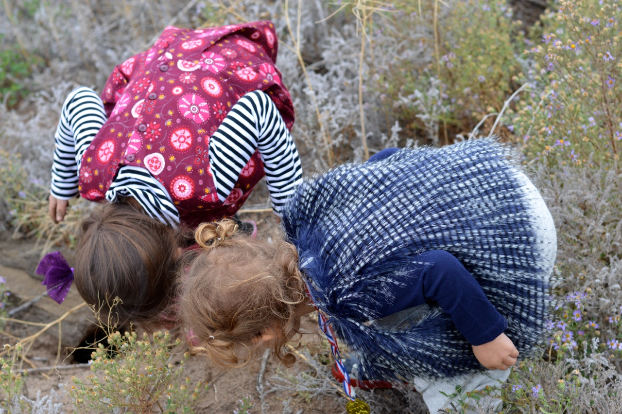 Nature-Walk-with-Toddlers-in-Colorado-25.jpg