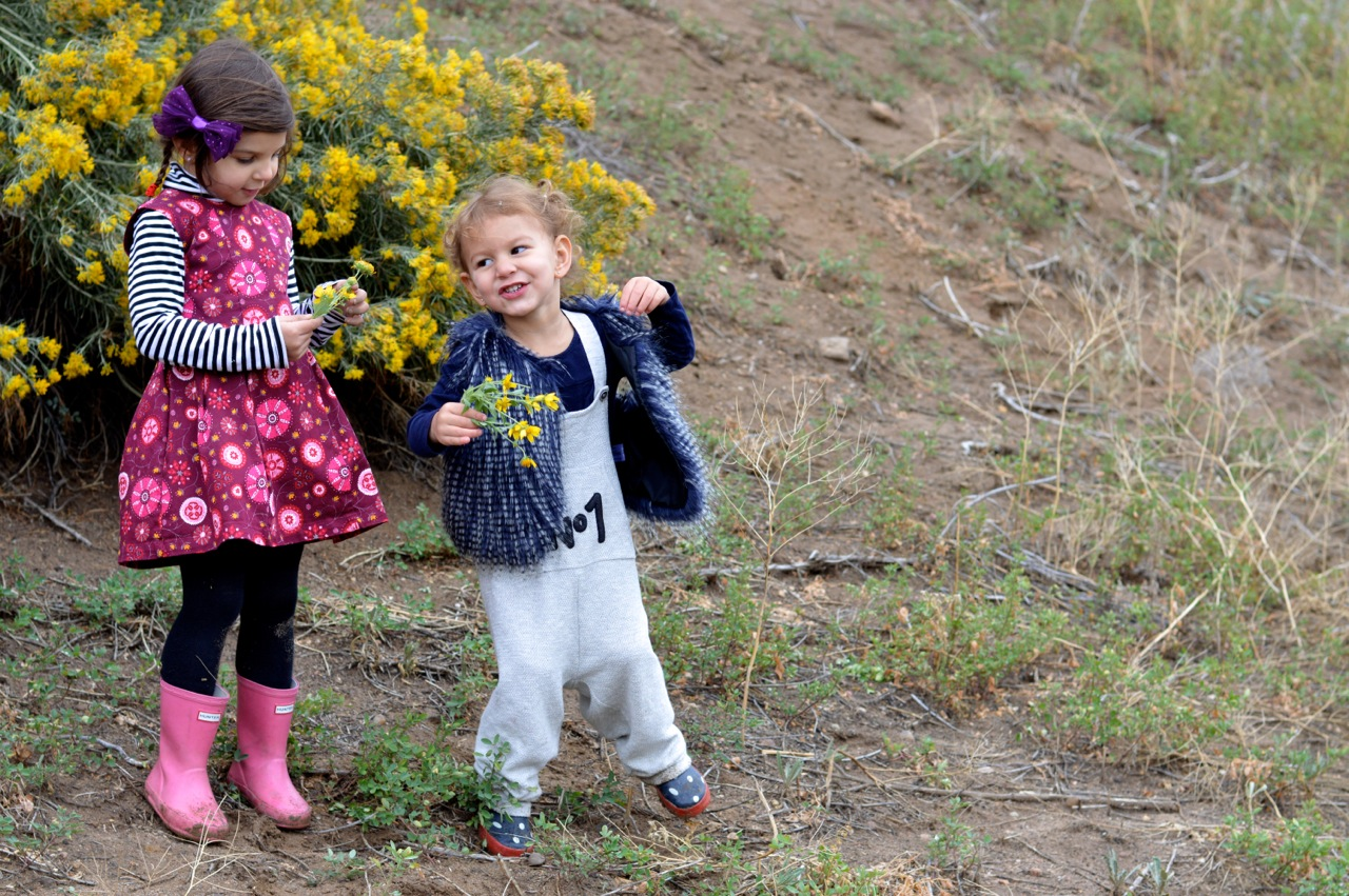 Nature-Walk-with-Toddlers-in-Colorado-37.jpg
