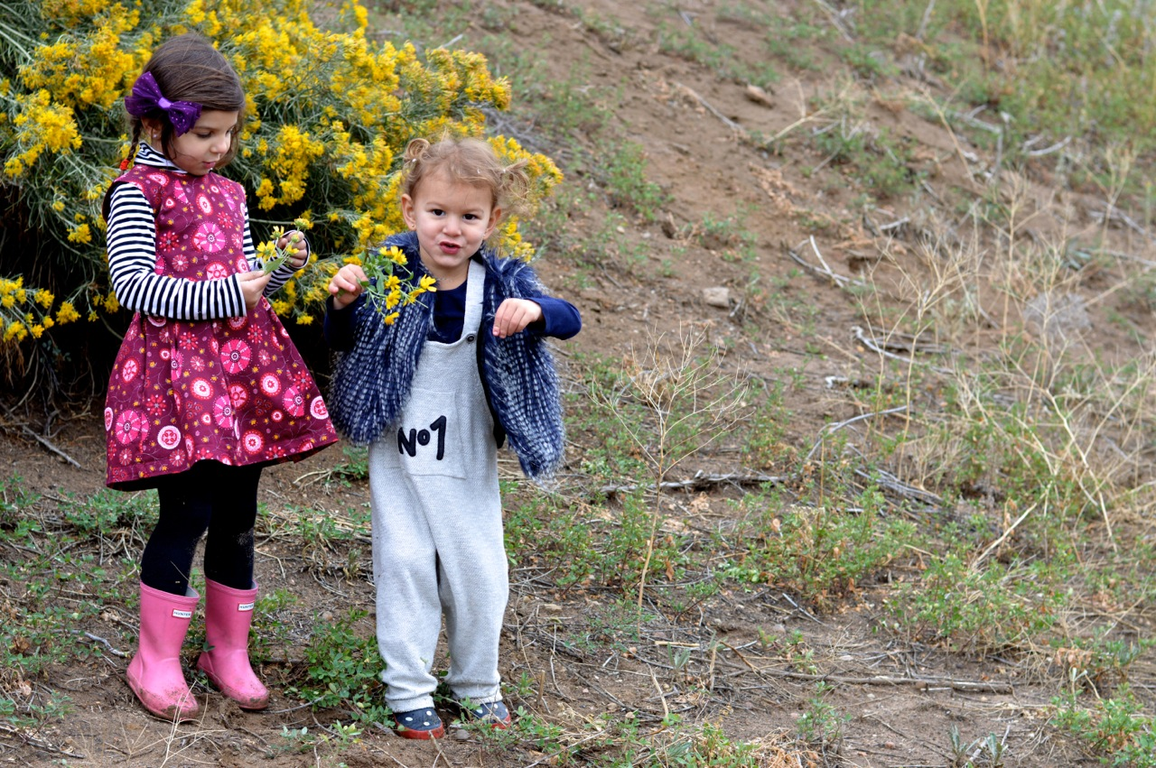 Nature-Walk-with-Toddlers-in-Colorado-38.jpg