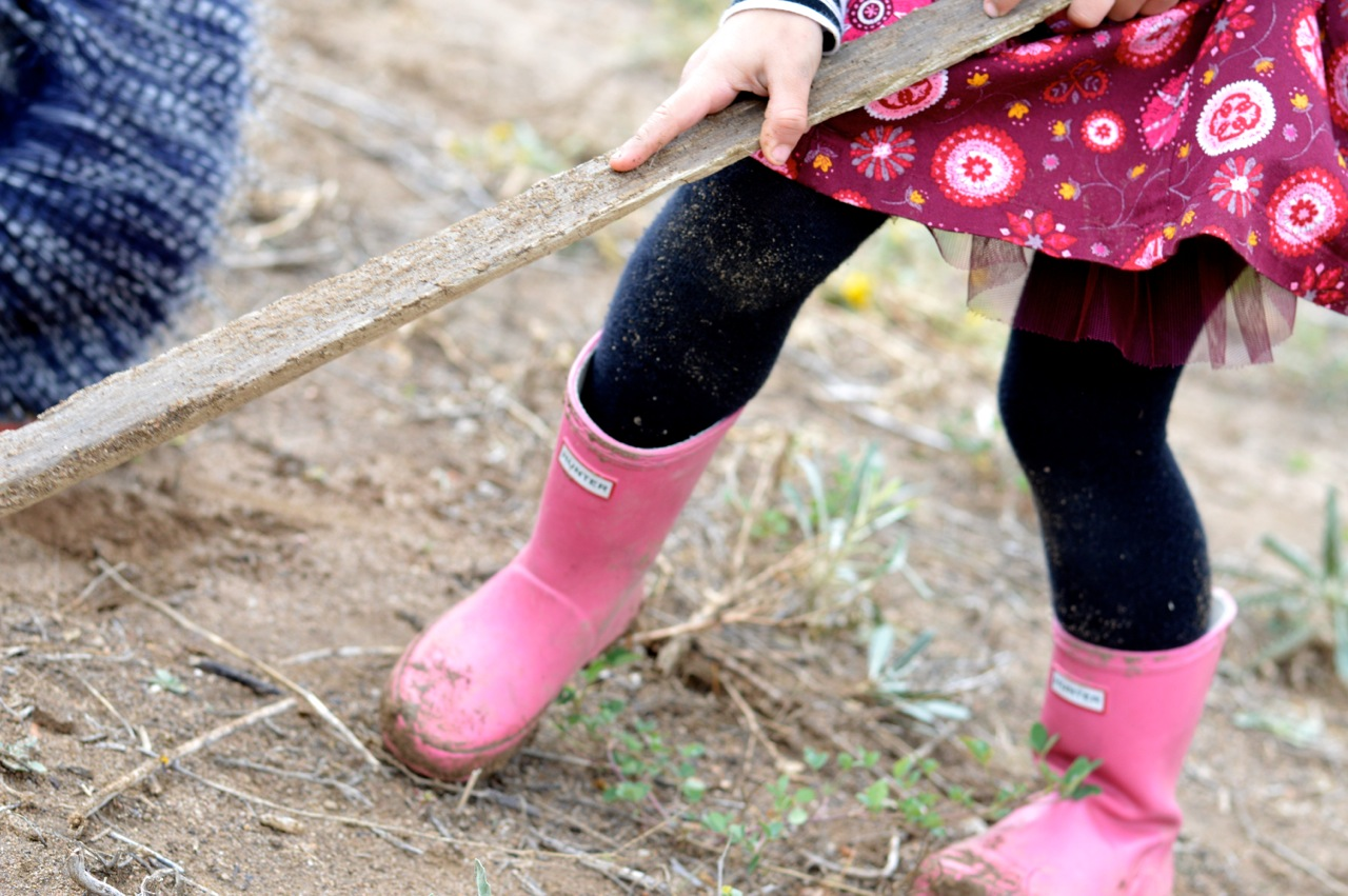 Nature-Walk-with-Toddlers-in-Colorado-56.jpg