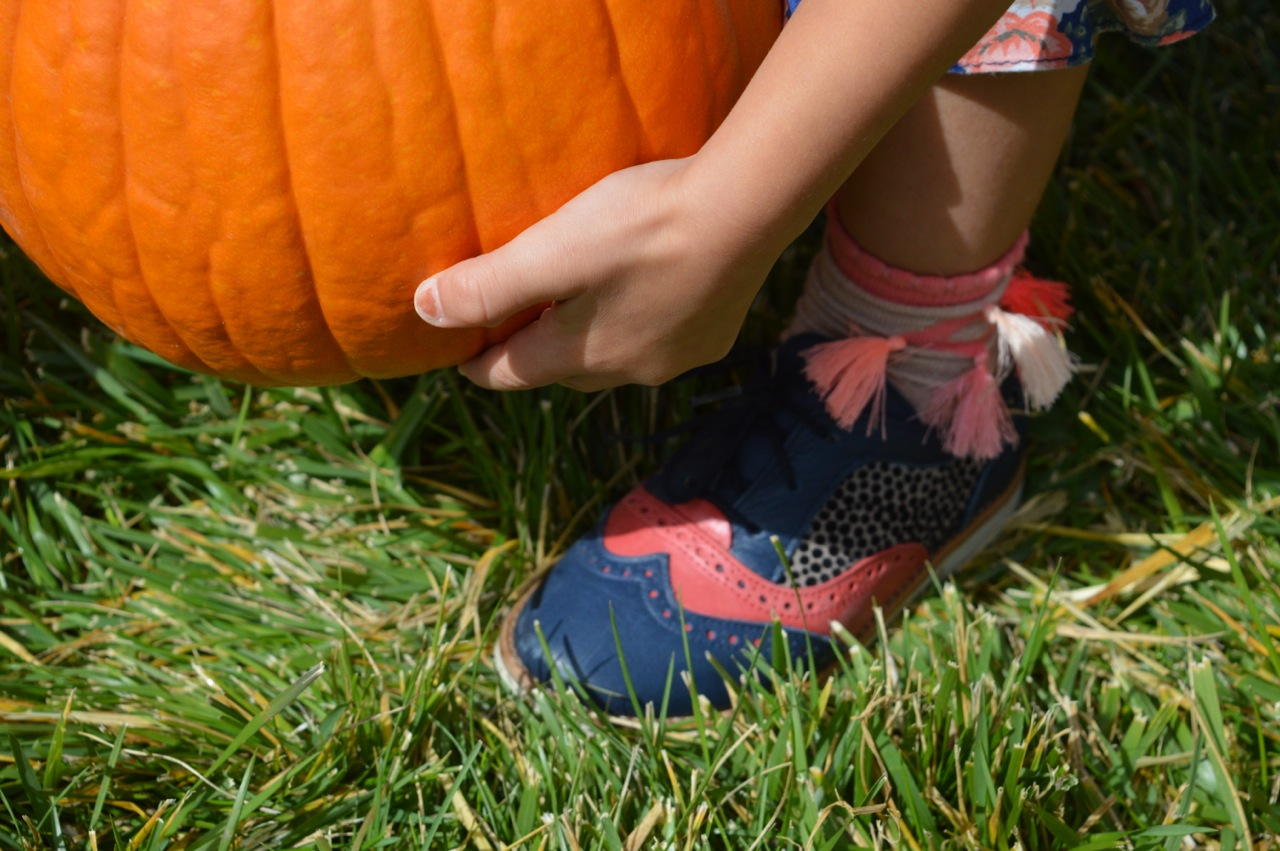 Church-Pumpkin-Patch-Aurora-Colorado-13.jpg