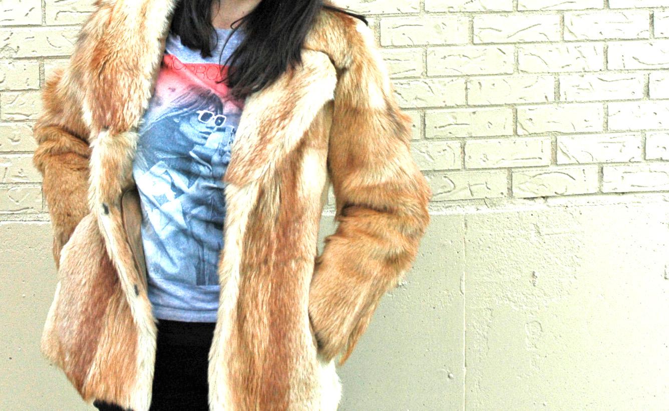 fur-cover-head-on_edited-2.jpg