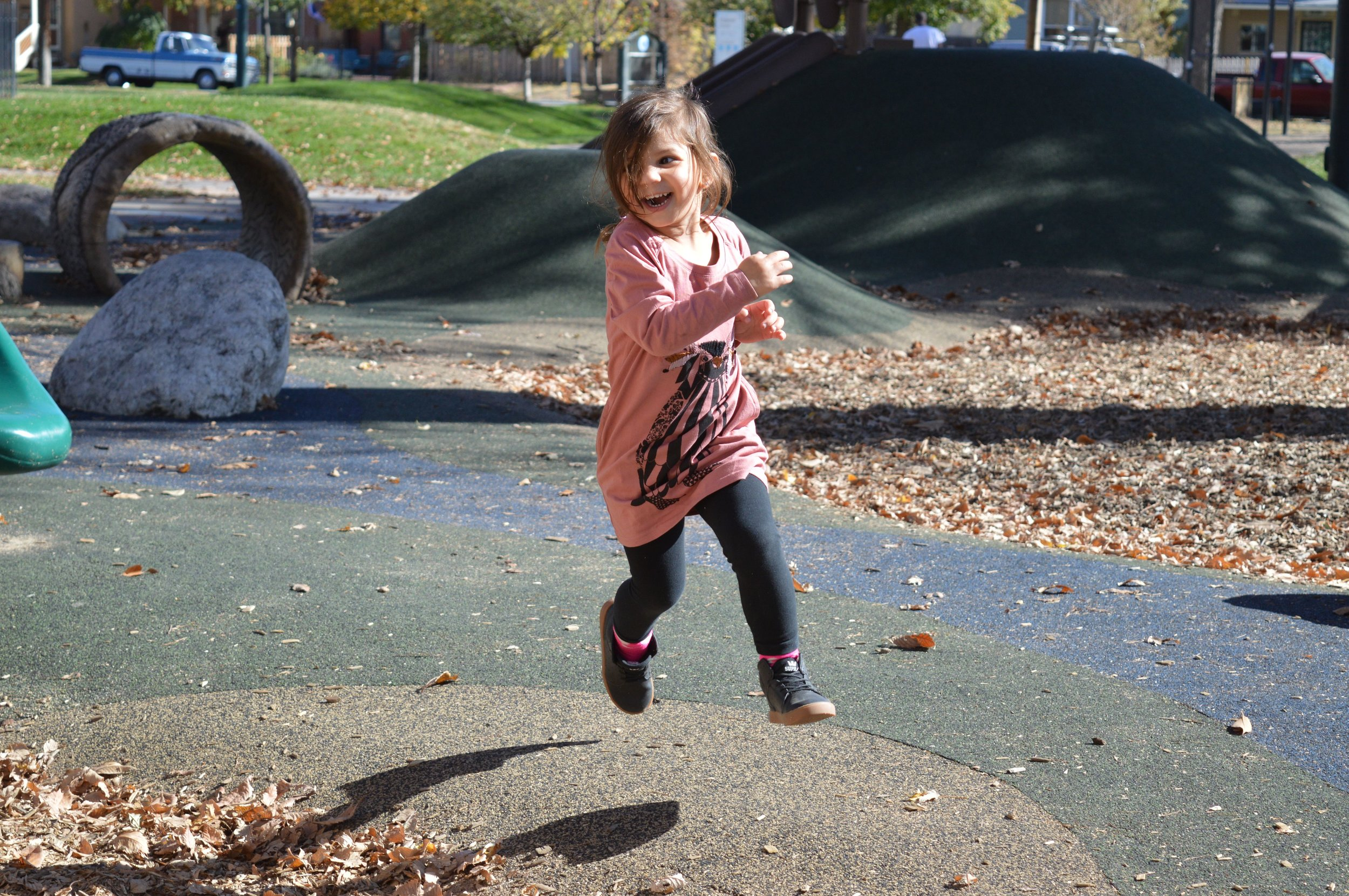 Remy running at park nov 2 2016.jpg