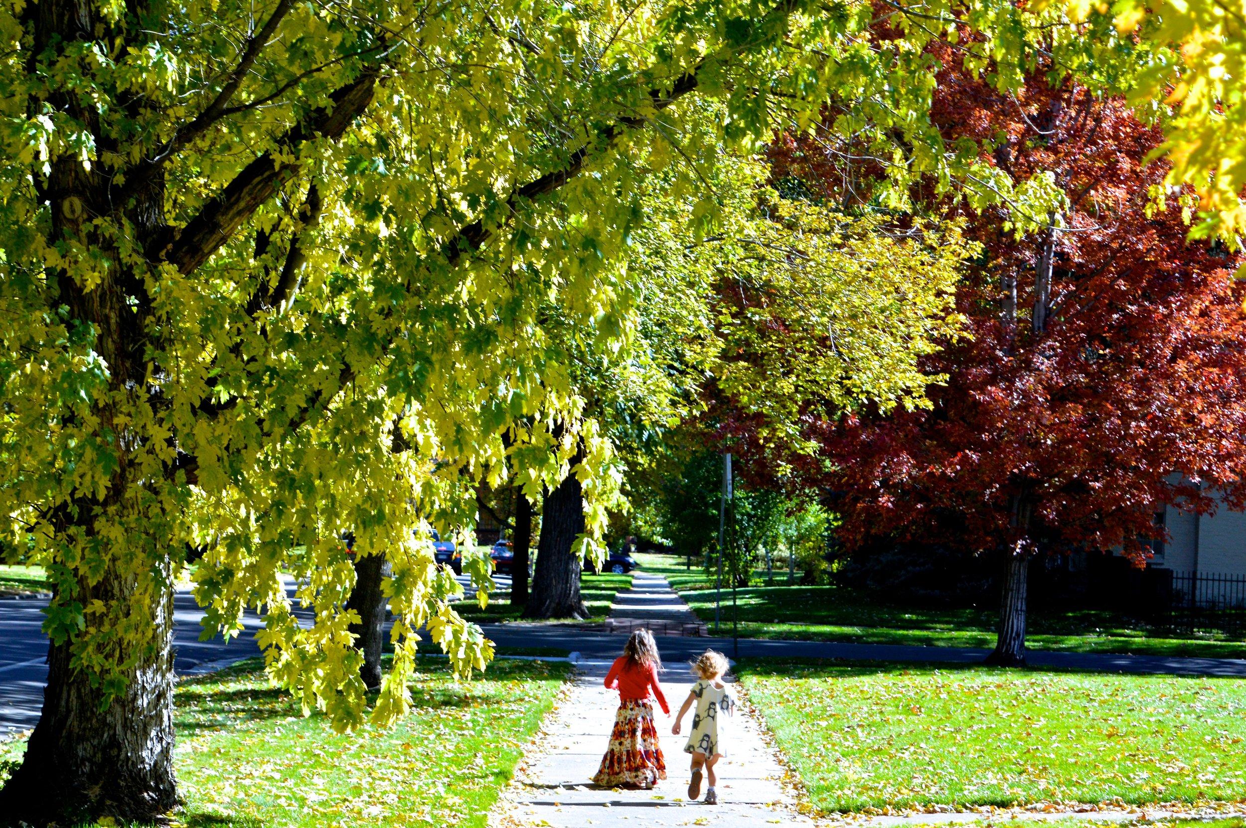 Park Hill 14.jpg