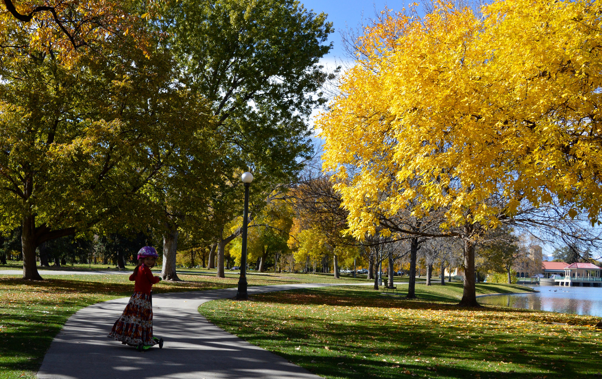 City Park Denver in Fall 4.jpg