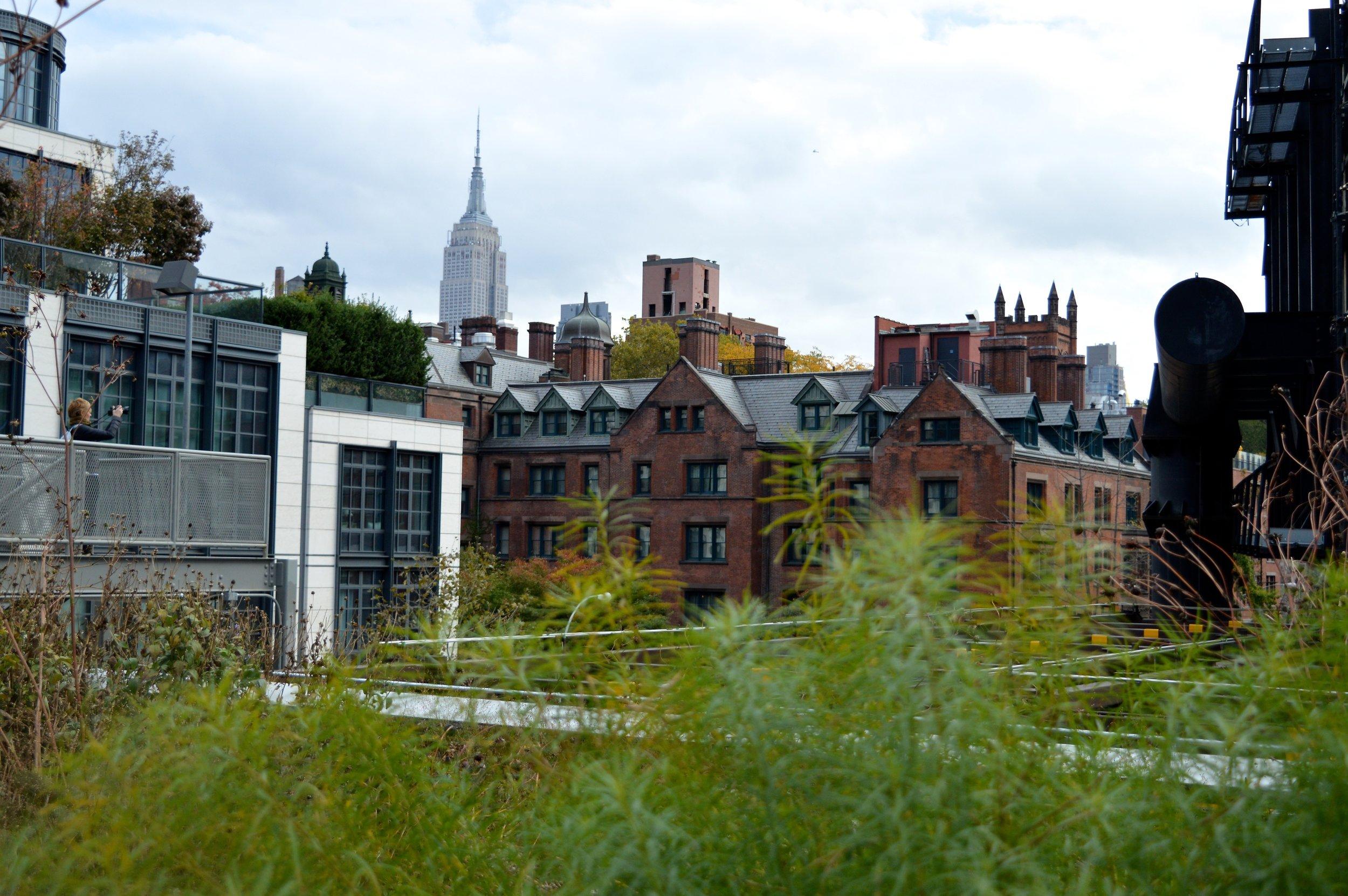 New York City October 2017 High Line 4.jpg
