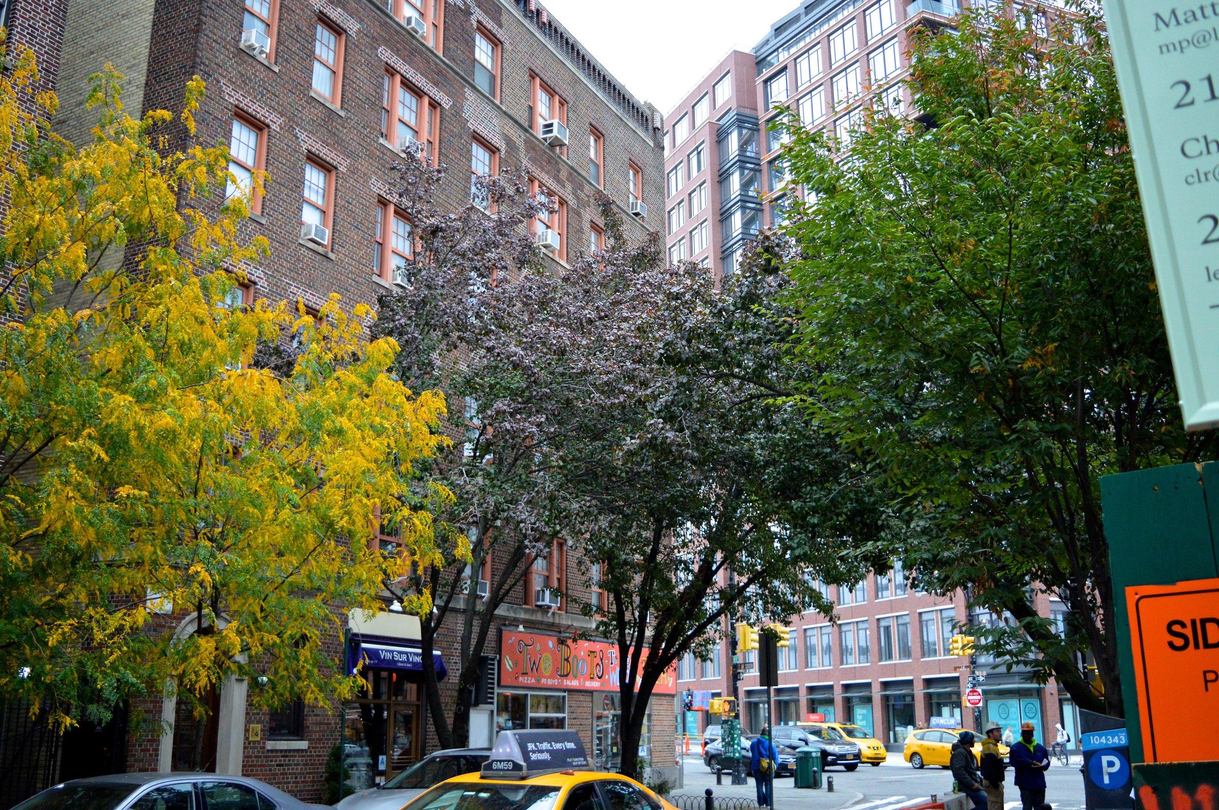 New York October 2017 Walking Tour 5.jpg