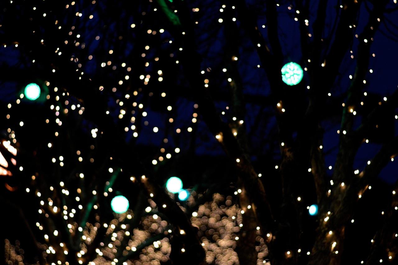 Colorado Hotel Glenwood Springs at Christmastime 24.jpg