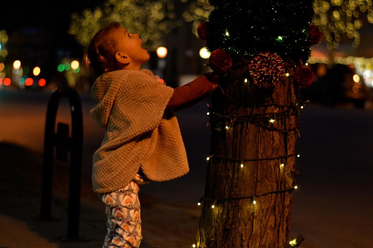 Colorado Hotel Glenwood Springs at Christmastime 25.jpg