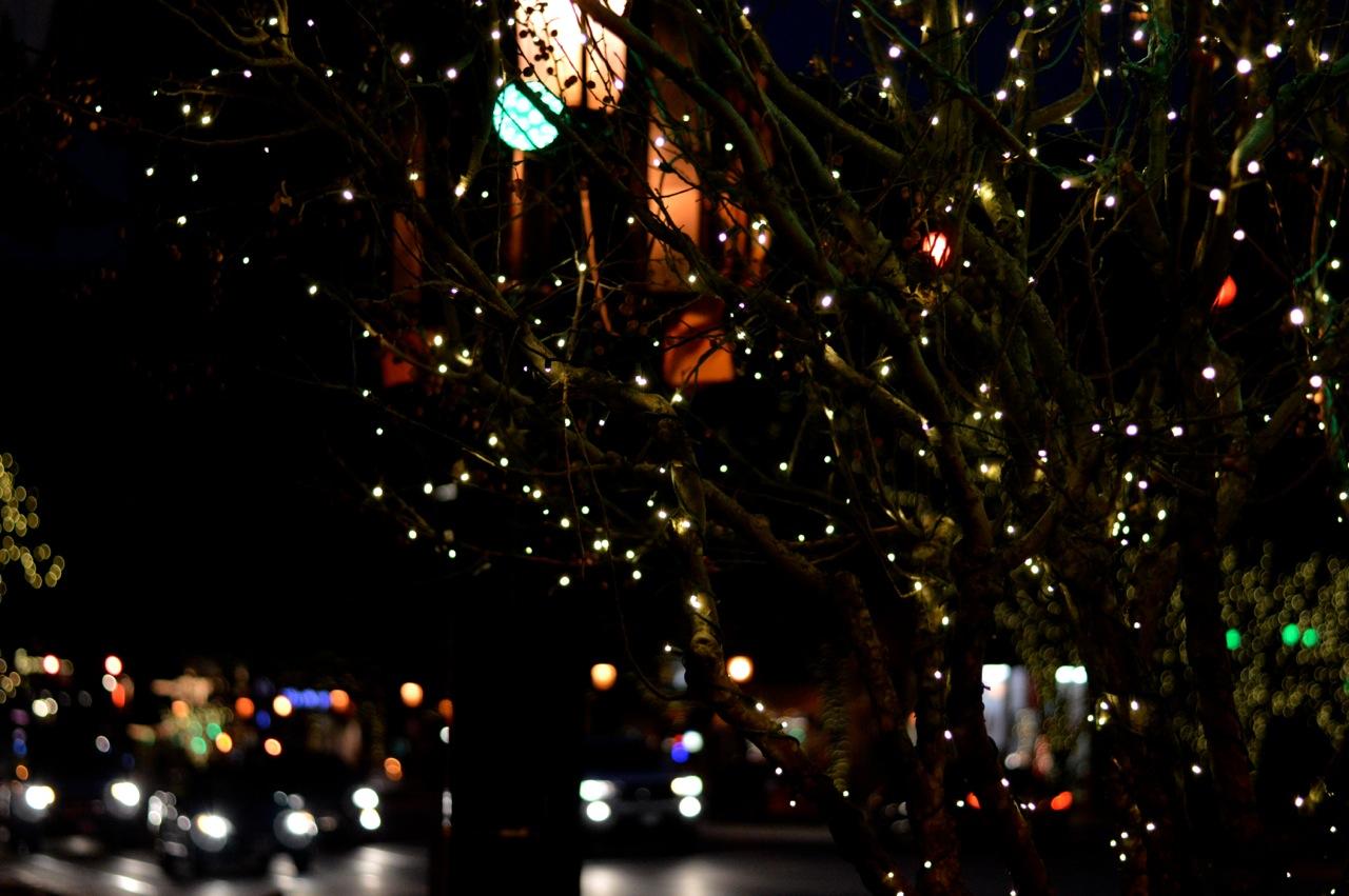 Colorado Hotel Glenwood Springs at Christmastime 27.jpg