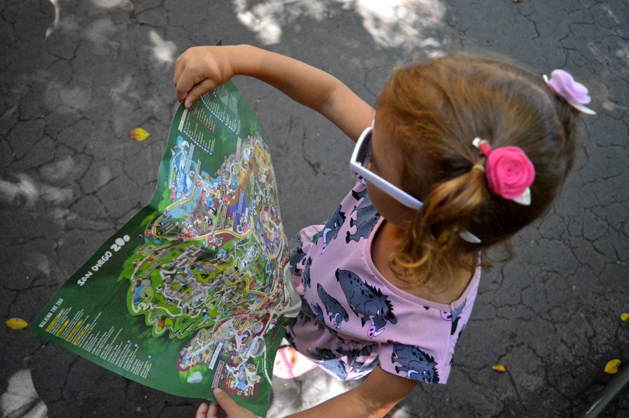 San Diego Zoo July 2018 9.jpg