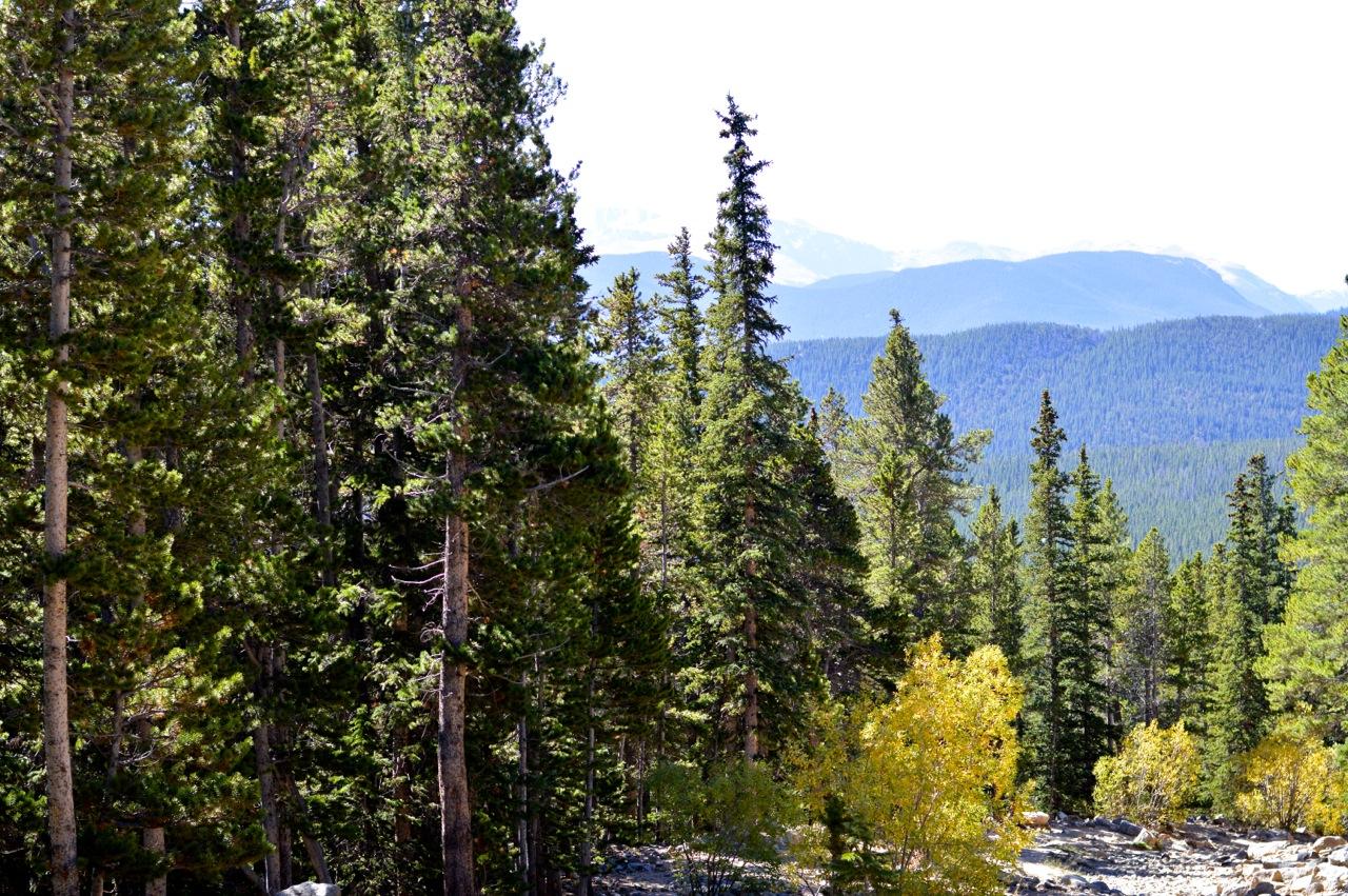 Fall leaf peeping in Colorado 13.jpg