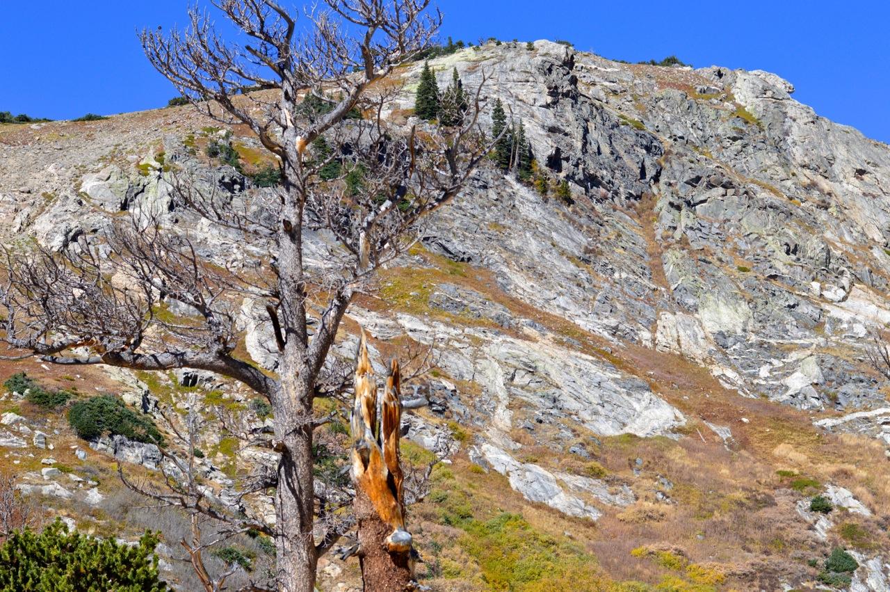 Fall leaf peeping in Colorado 46.jpg