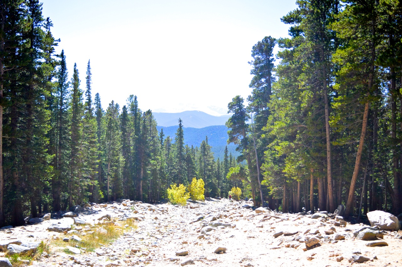 Fall leaf peeping in Colorado 75.jpg