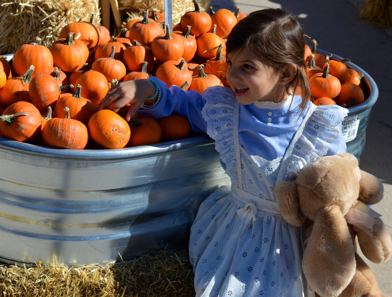 Fall Fest Nick's Garden Center Aurora 6.jpg