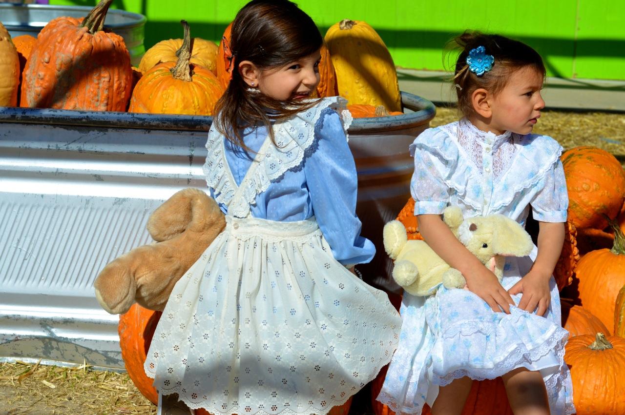 Fall Fest Nick's Garden Center Aurora 9.jpg