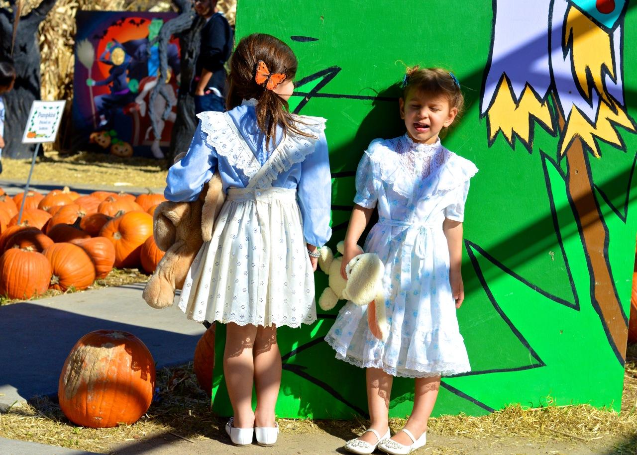 Fall Fest Nick's Garden Center Aurora 11.jpg