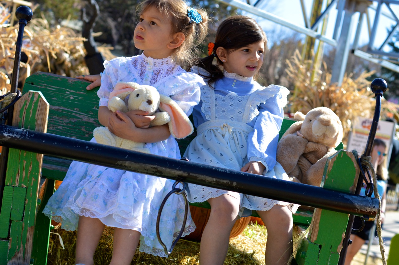 Fall Fest Nick's Garden Center Aurora 14.jpg