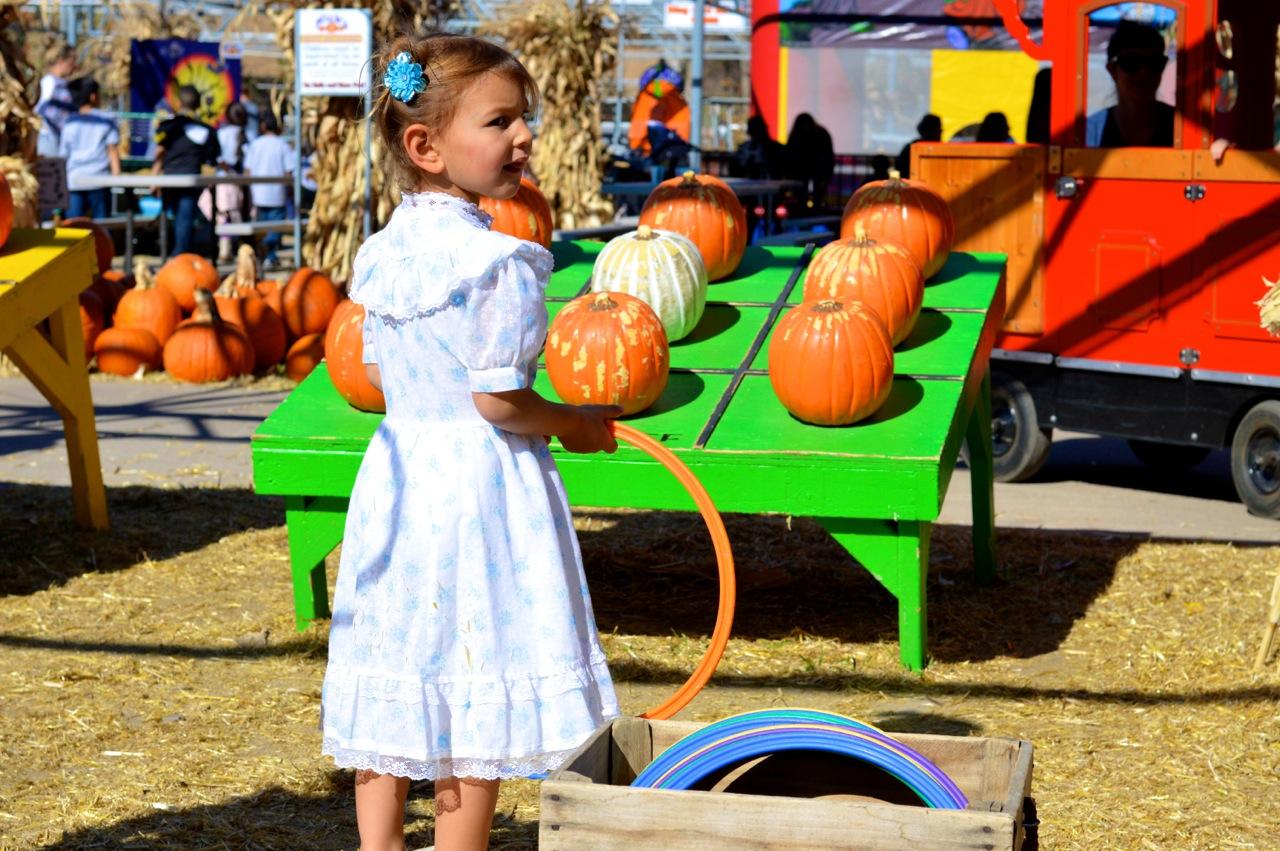 Fall Fest Nick's Garden Center Aurora 19.jpg
