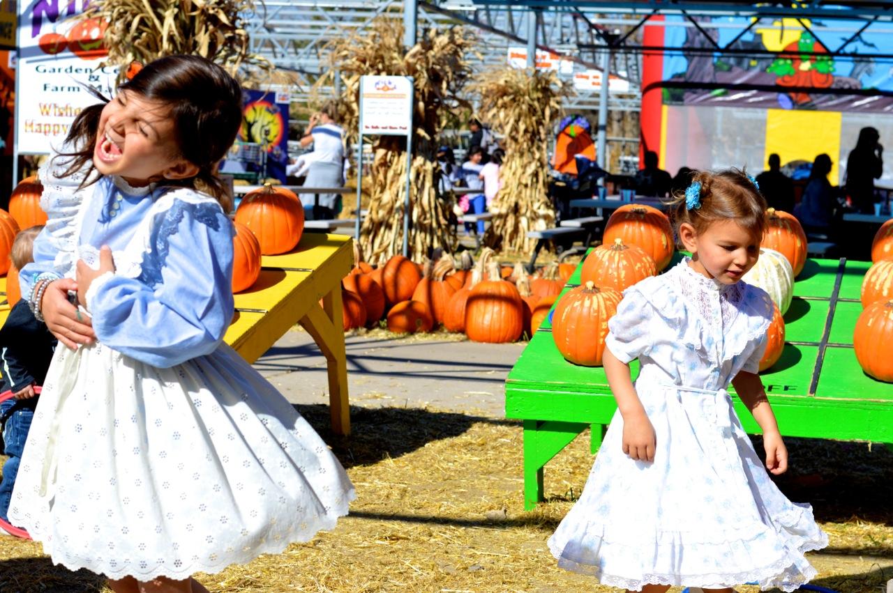 Fall Fest Nick's Garden Center Aurora 21.jpg