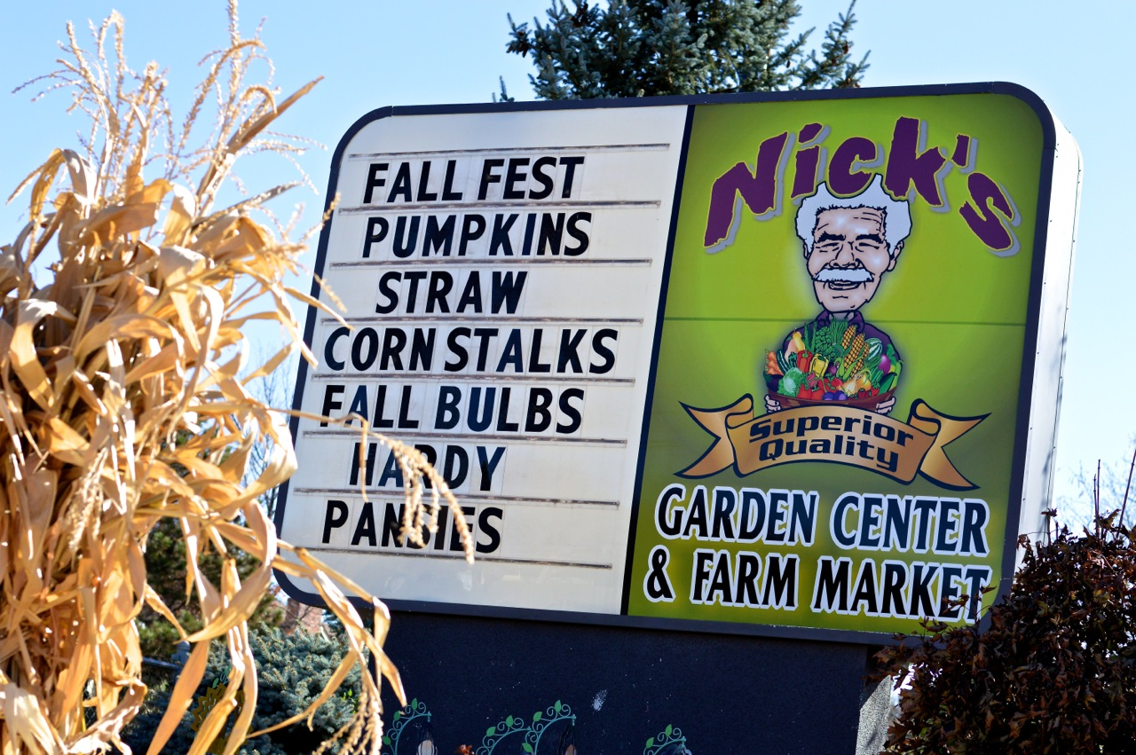 Fall Fest Nick's Garden Center Aurora 36.jpg