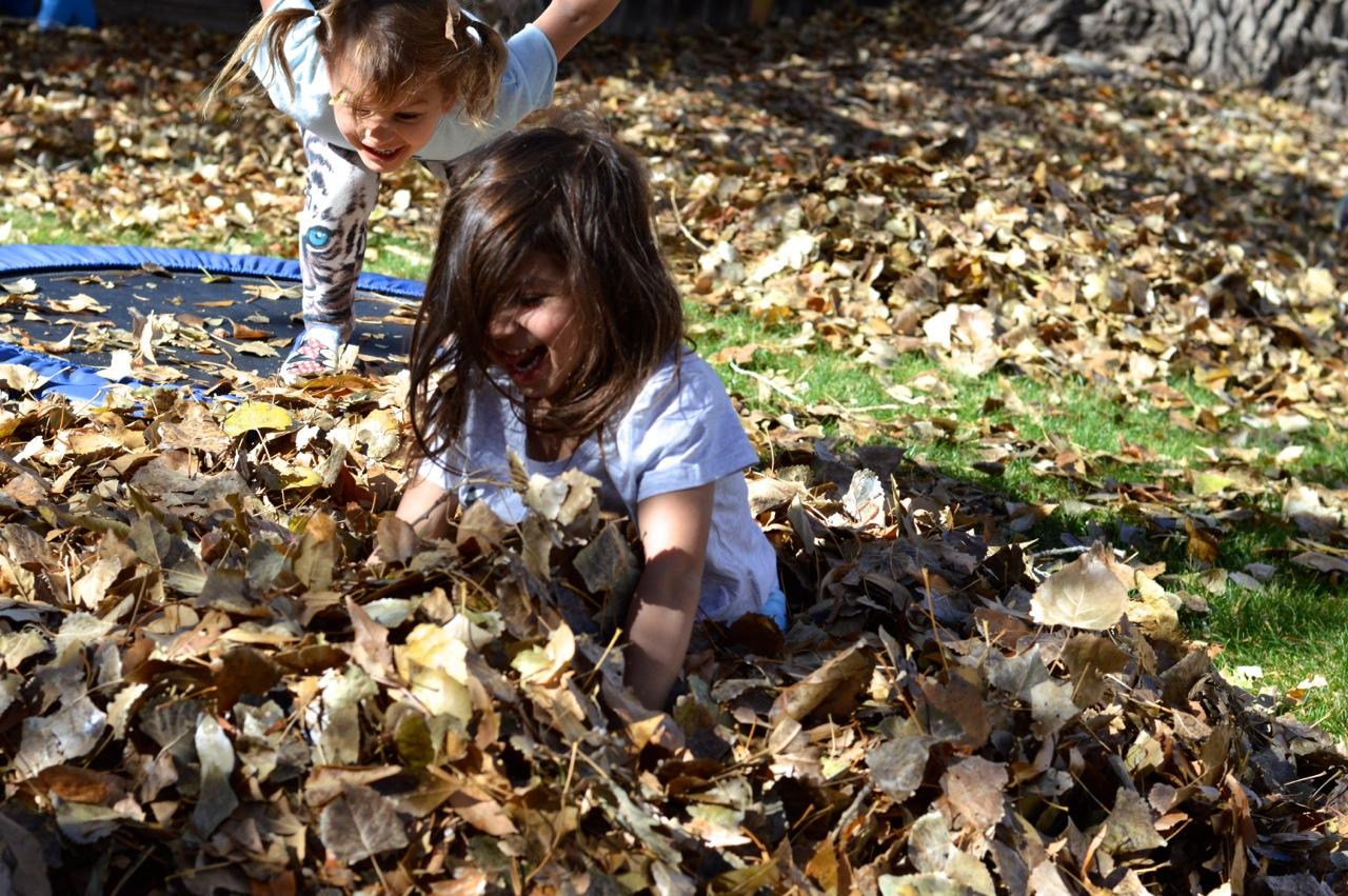 Jumping in Leaves 2.jpg