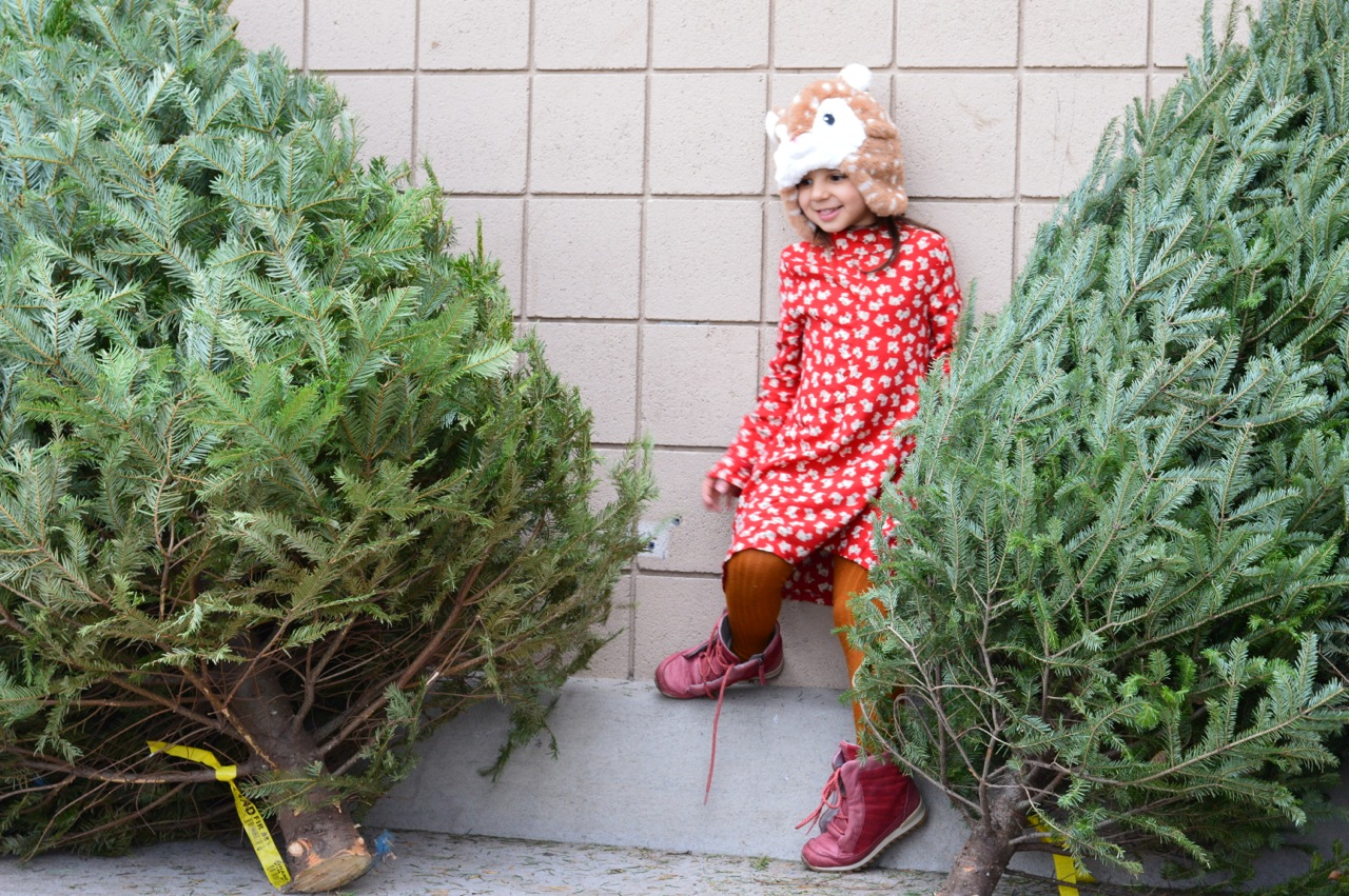 Christmas Tree Picking 2018 2.jpg