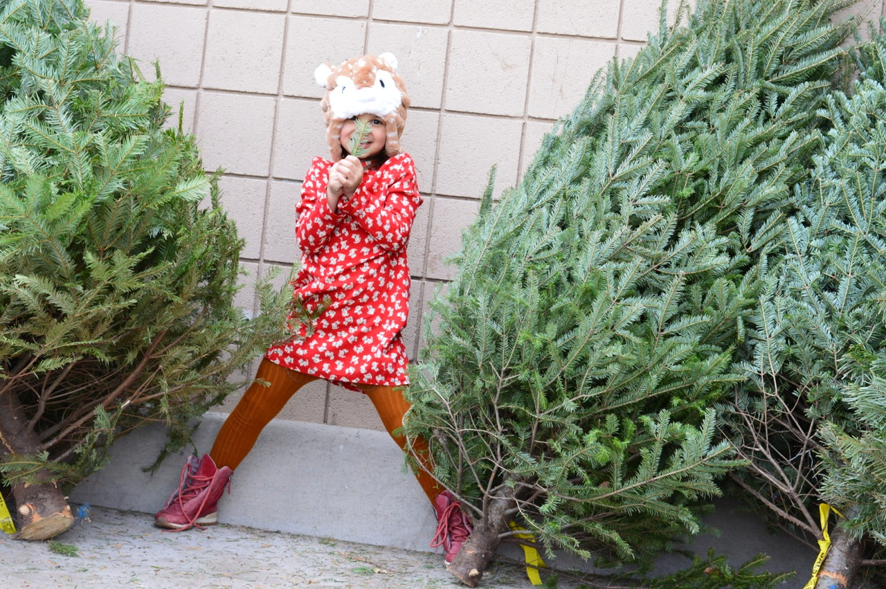 Christmas Tree Picking 2018 3.jpg