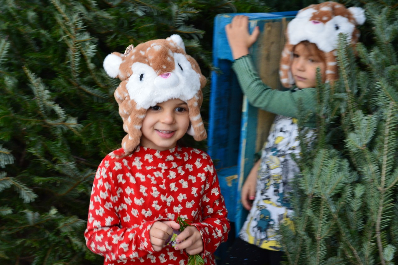 Christmas Tree Picking 2018 17.jpg
