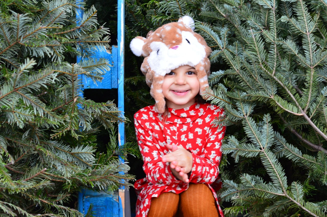 Christmas Tree Picking 2018 20.jpg