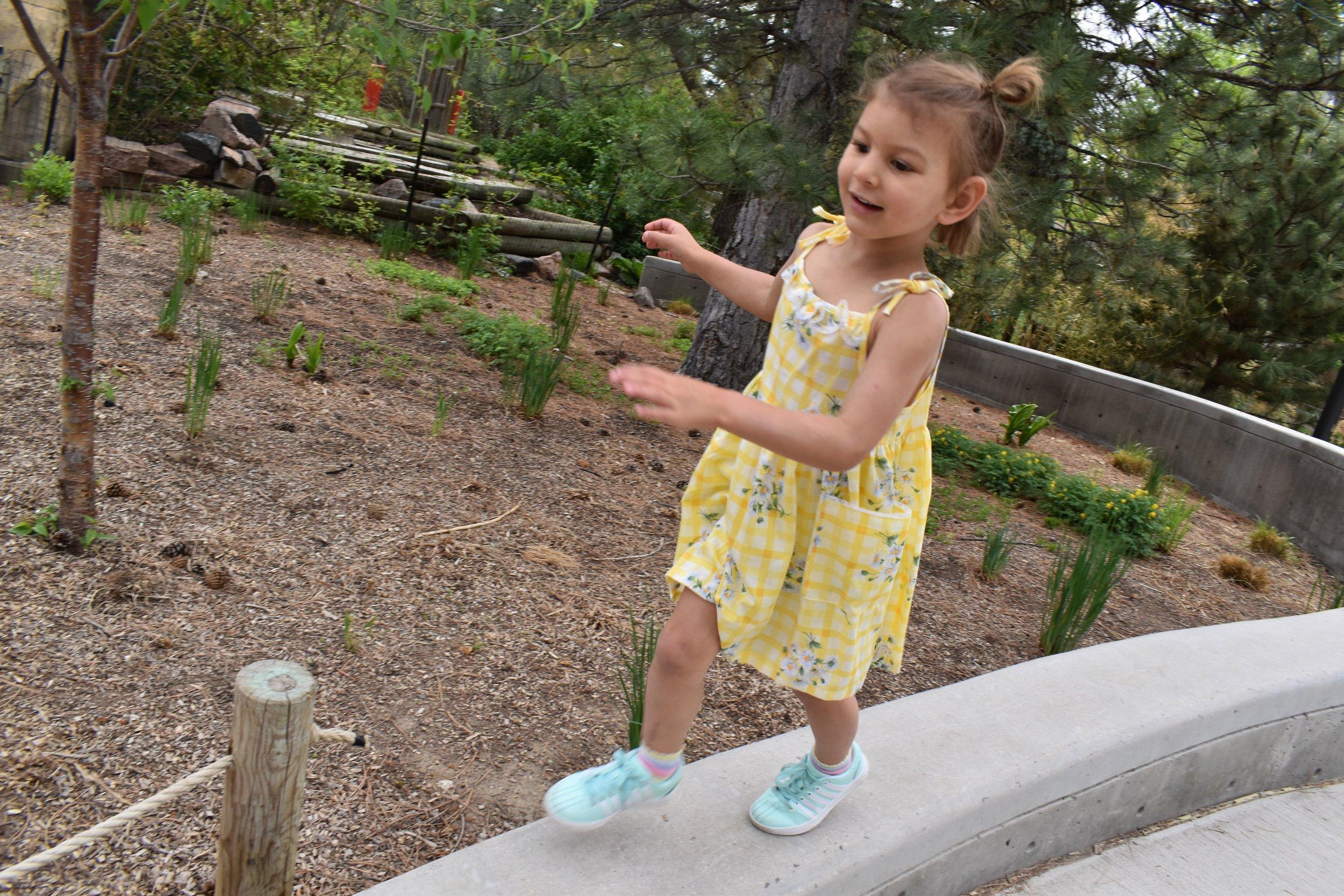 Denver Zoo day 4.jpg