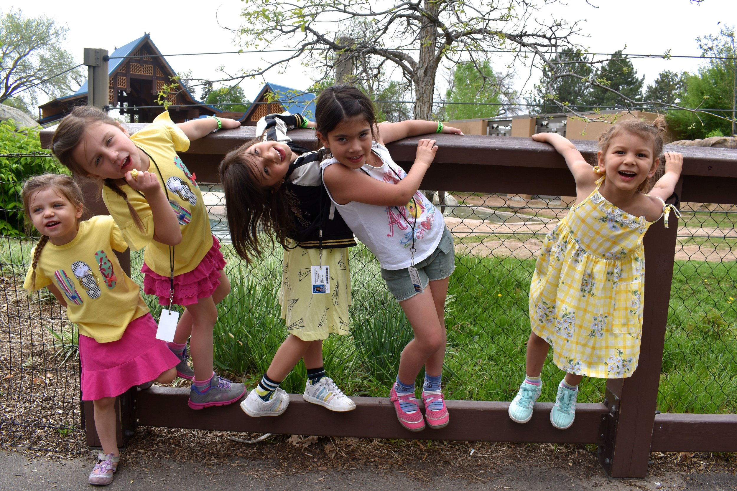 Denver Zoo day 12.jpg