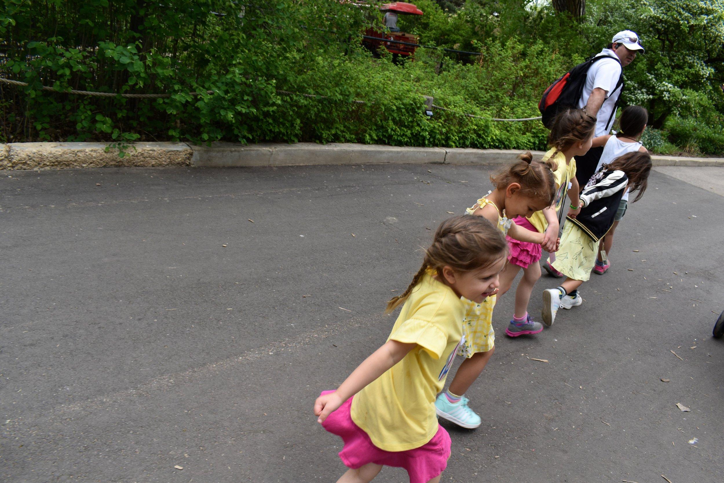 Denver Zoo day 22.jpg