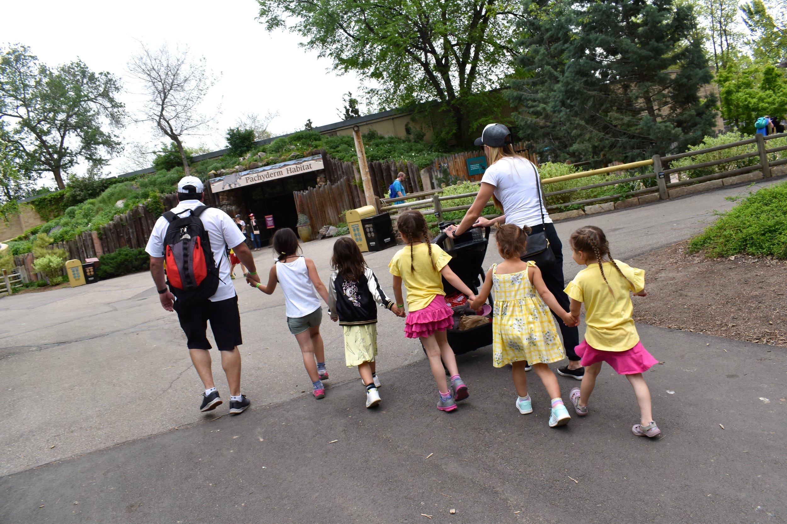 Denver Zoo day 23.jpg