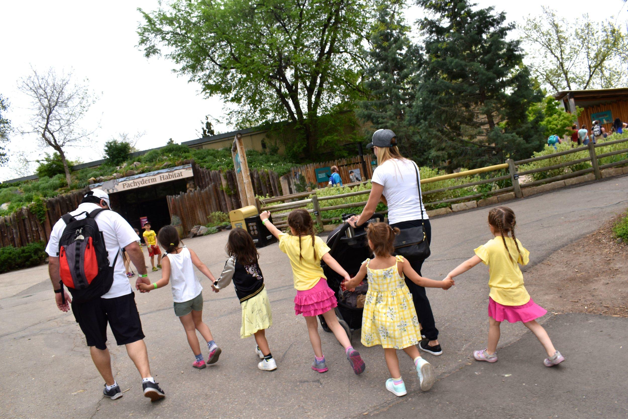 Denver Zoo day 24.jpg