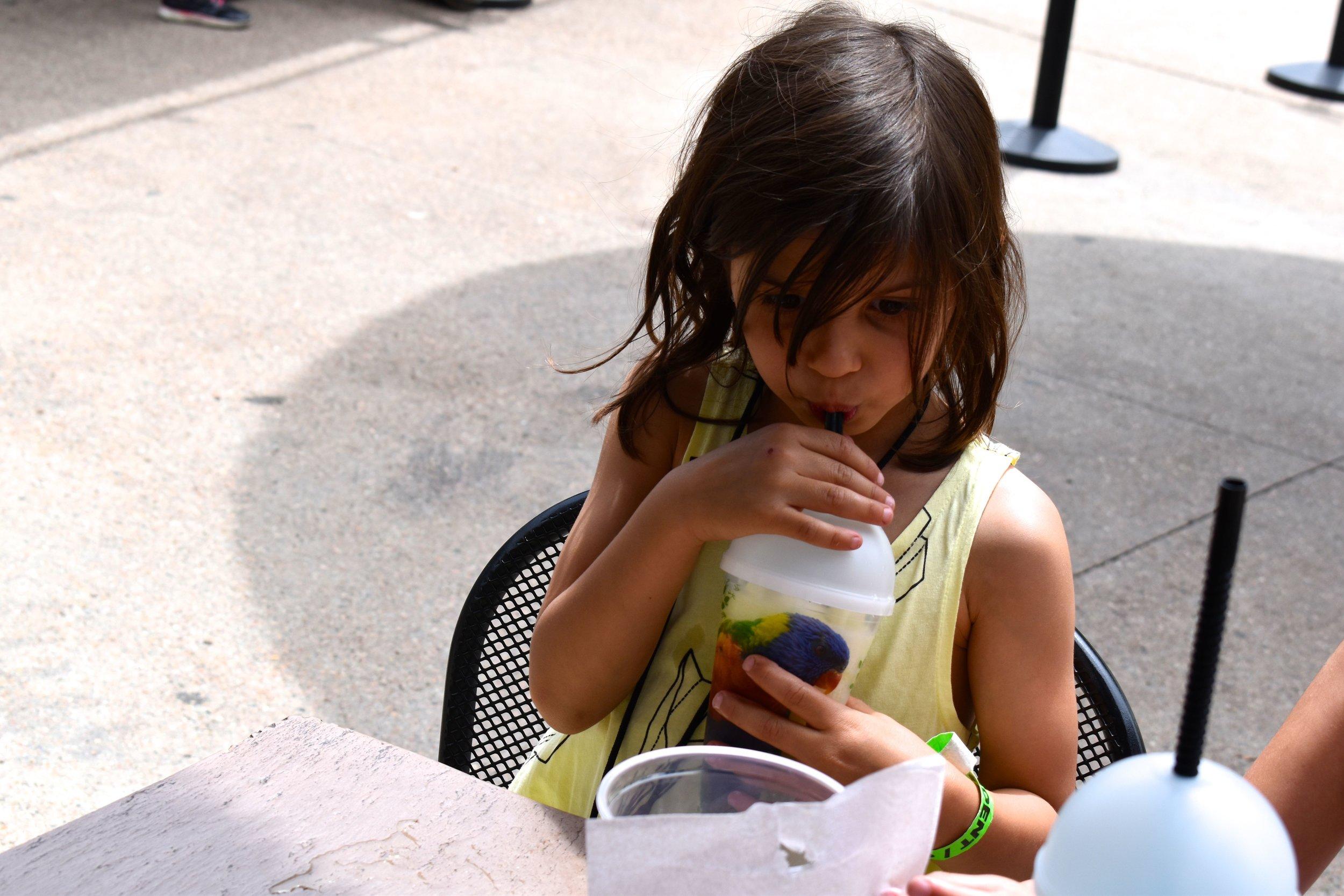 Denver Zoo day 29.jpg