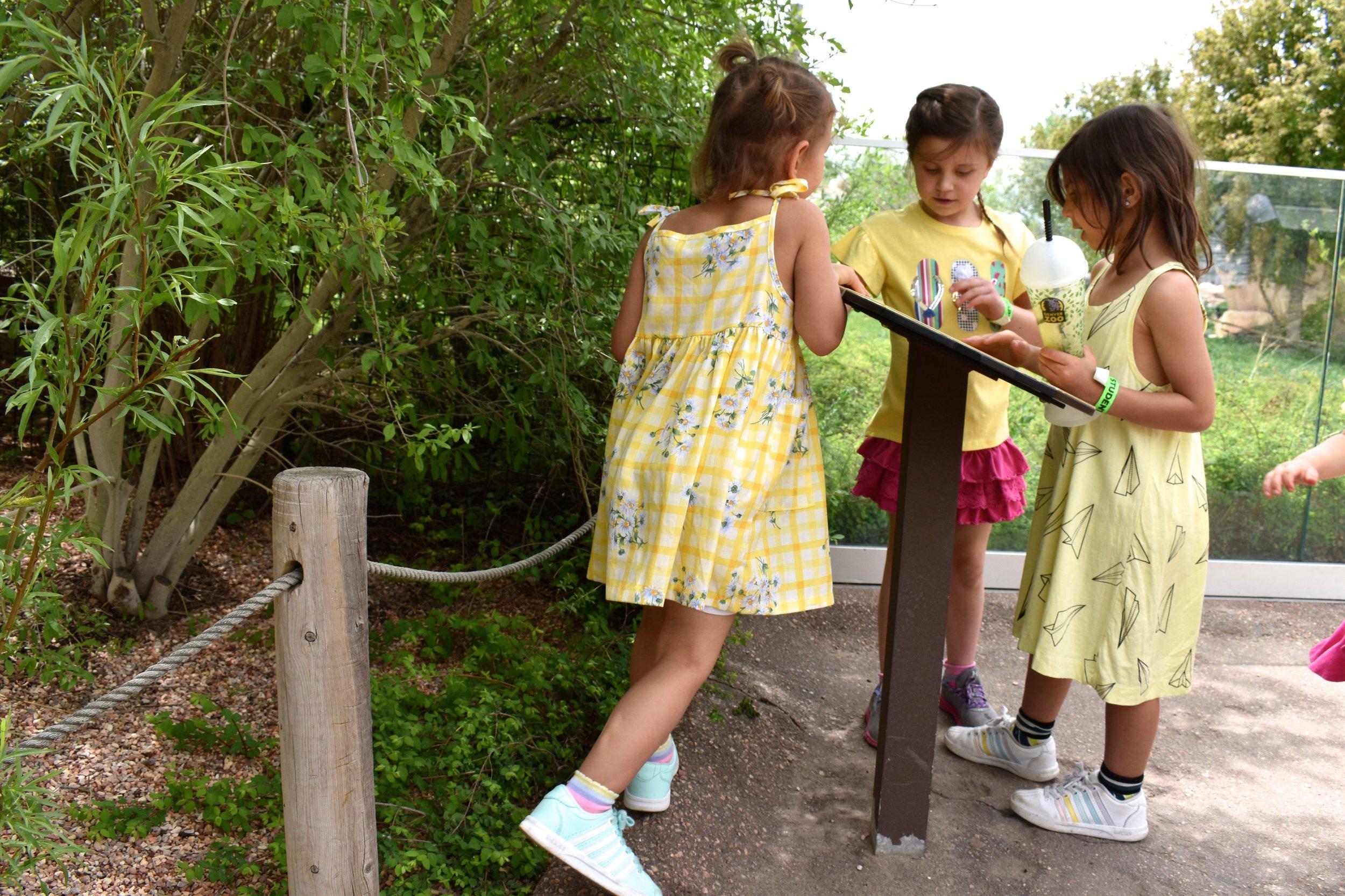 Denver Zoo day 34.jpg