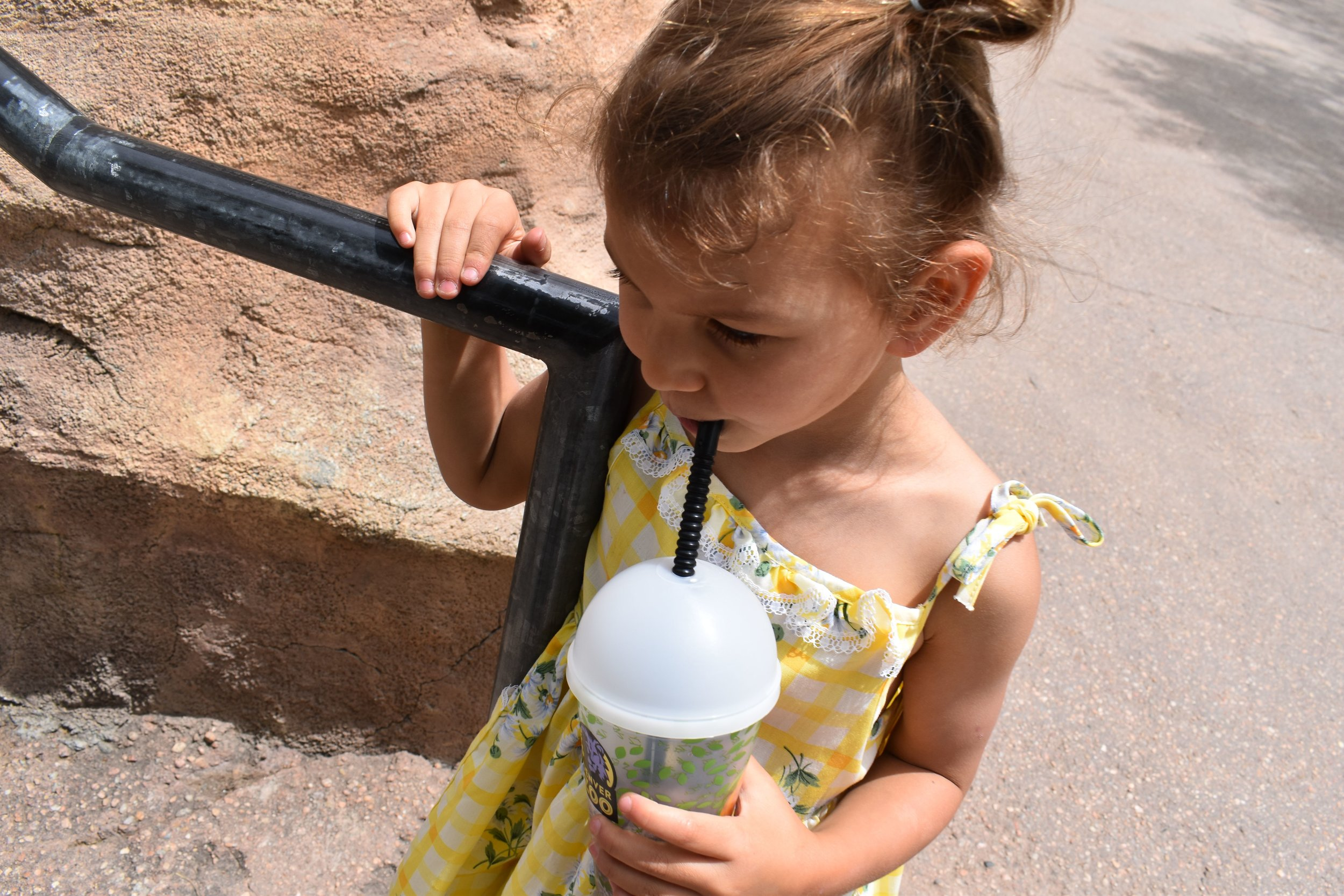 Denver Zoo day 38.jpg