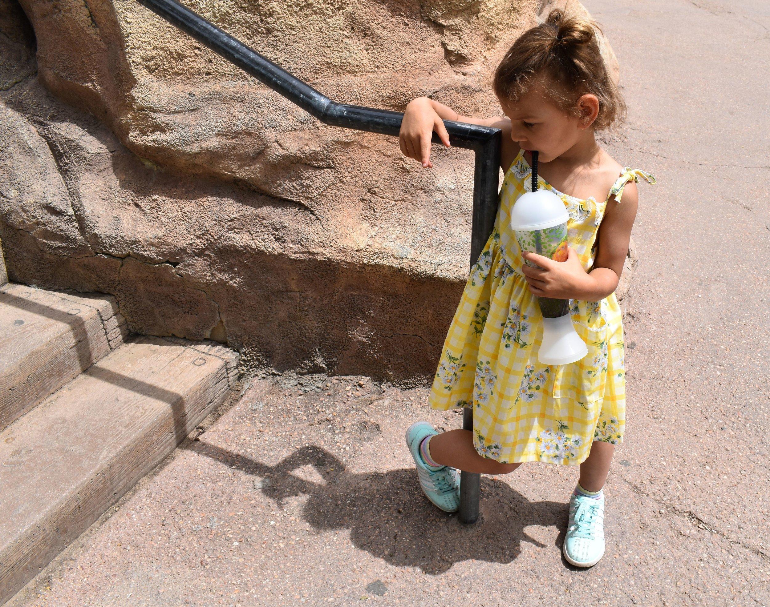 Denver Zoo day 37.jpg