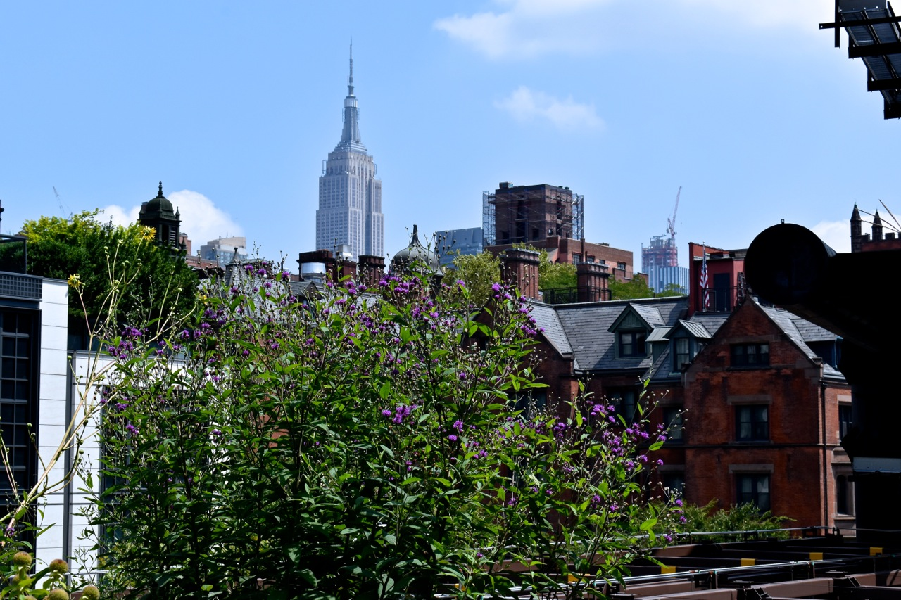 New York City August 2019 Highline and Hudson Yards 15.jpg