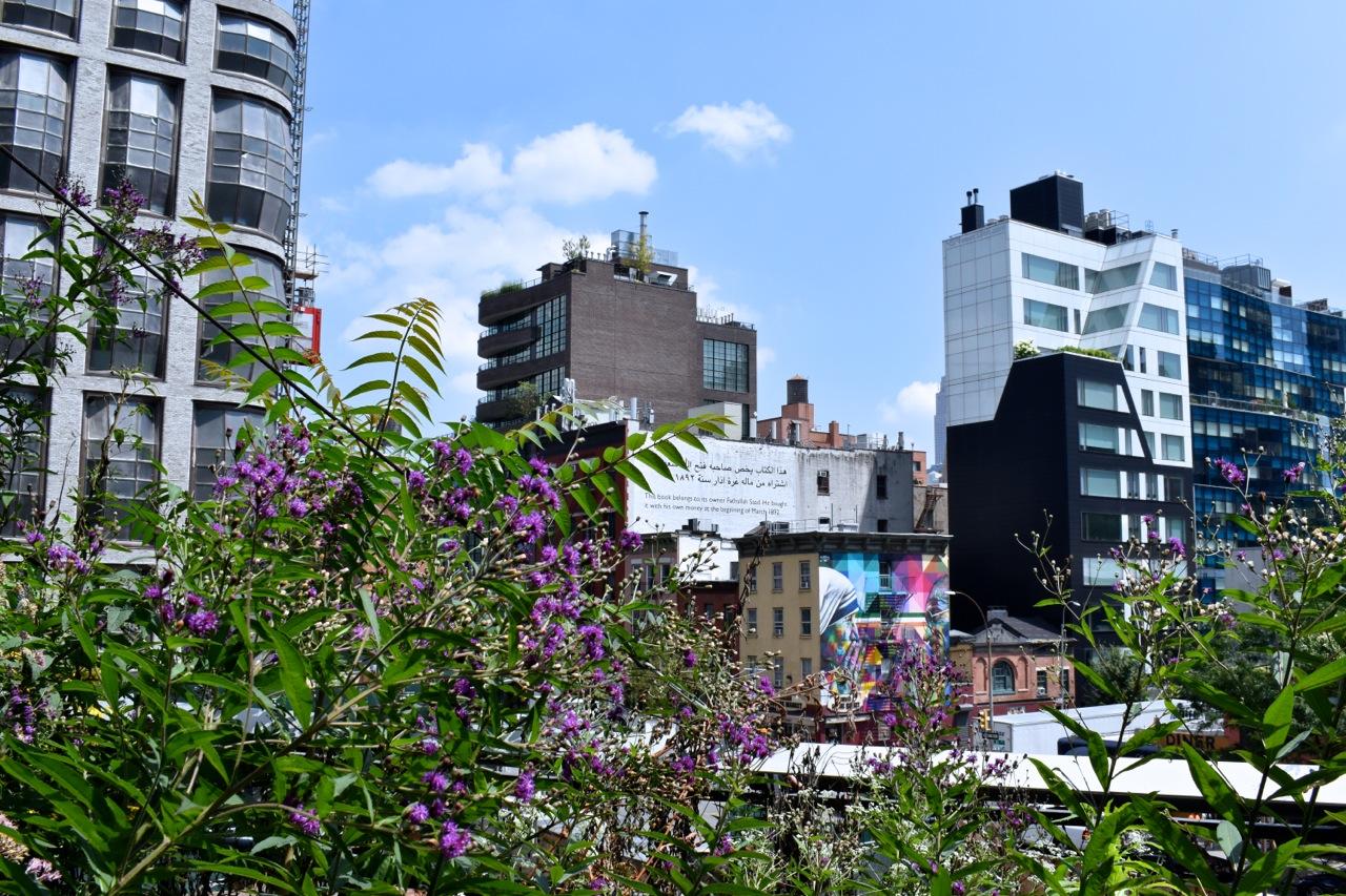 New York City August 2019 Highline and Hudson Yards 14.jpg