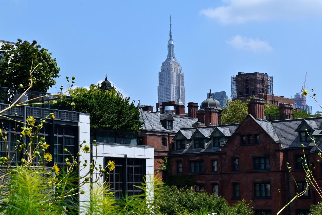 New York City August 2019 Highline and Hudson Yards 16.jpg