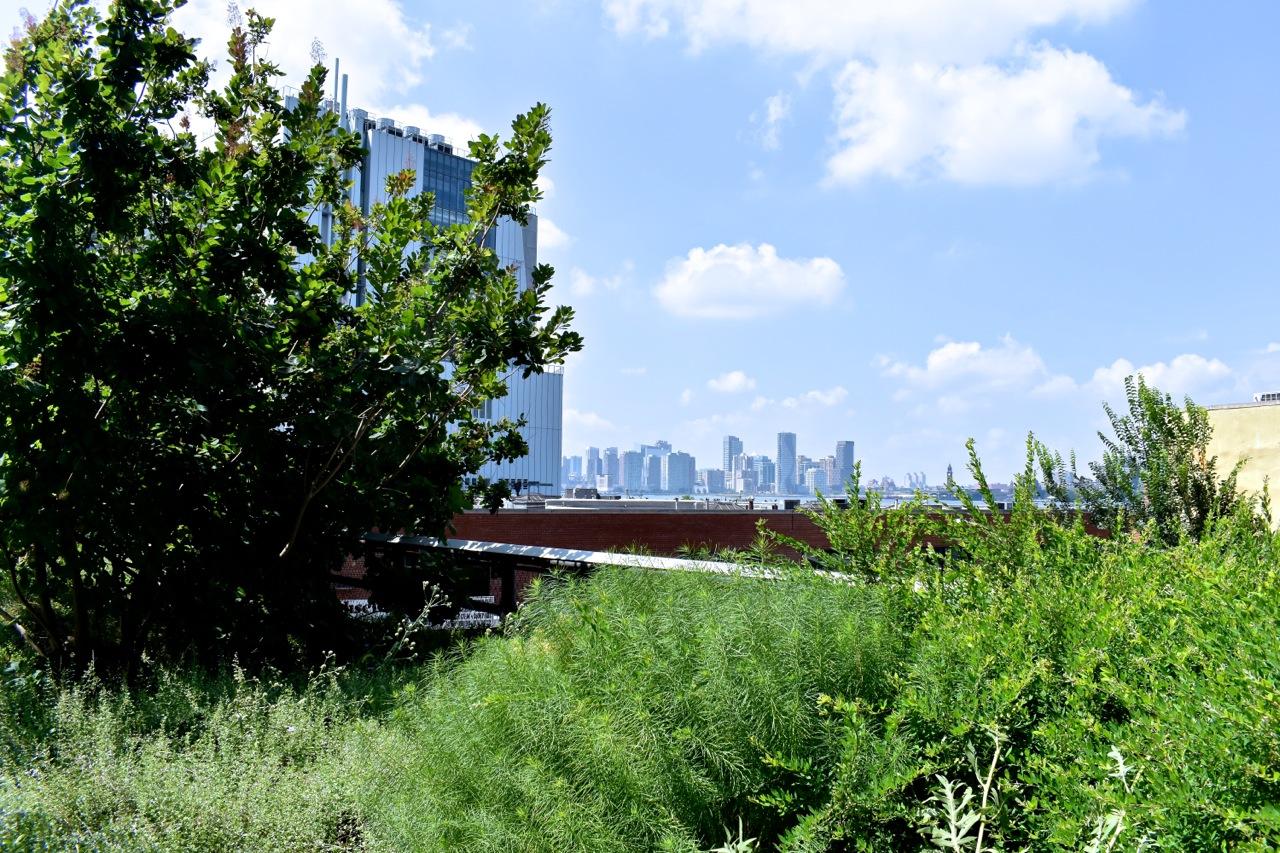 New York August 2019 Highline and Hudson Yards 21.jpg