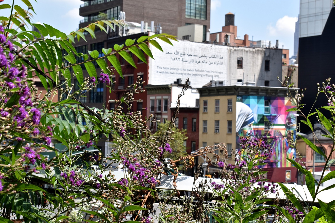 New York August 2019 Highline and Hudson Yards 26.jpg