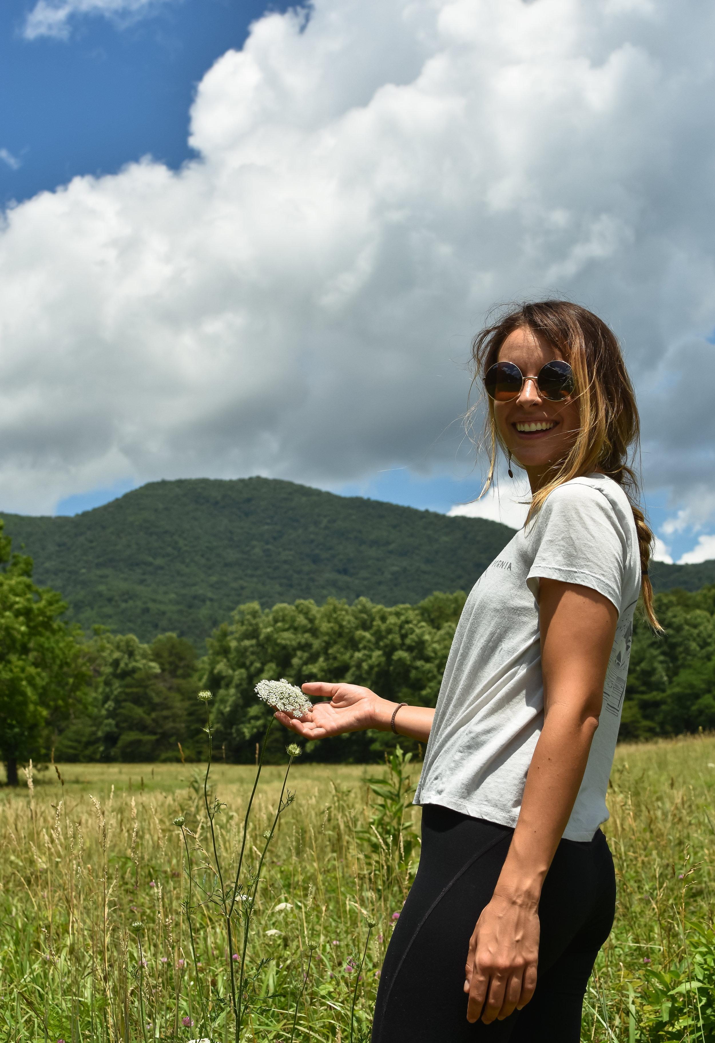 Loving the meadows in GSMNP