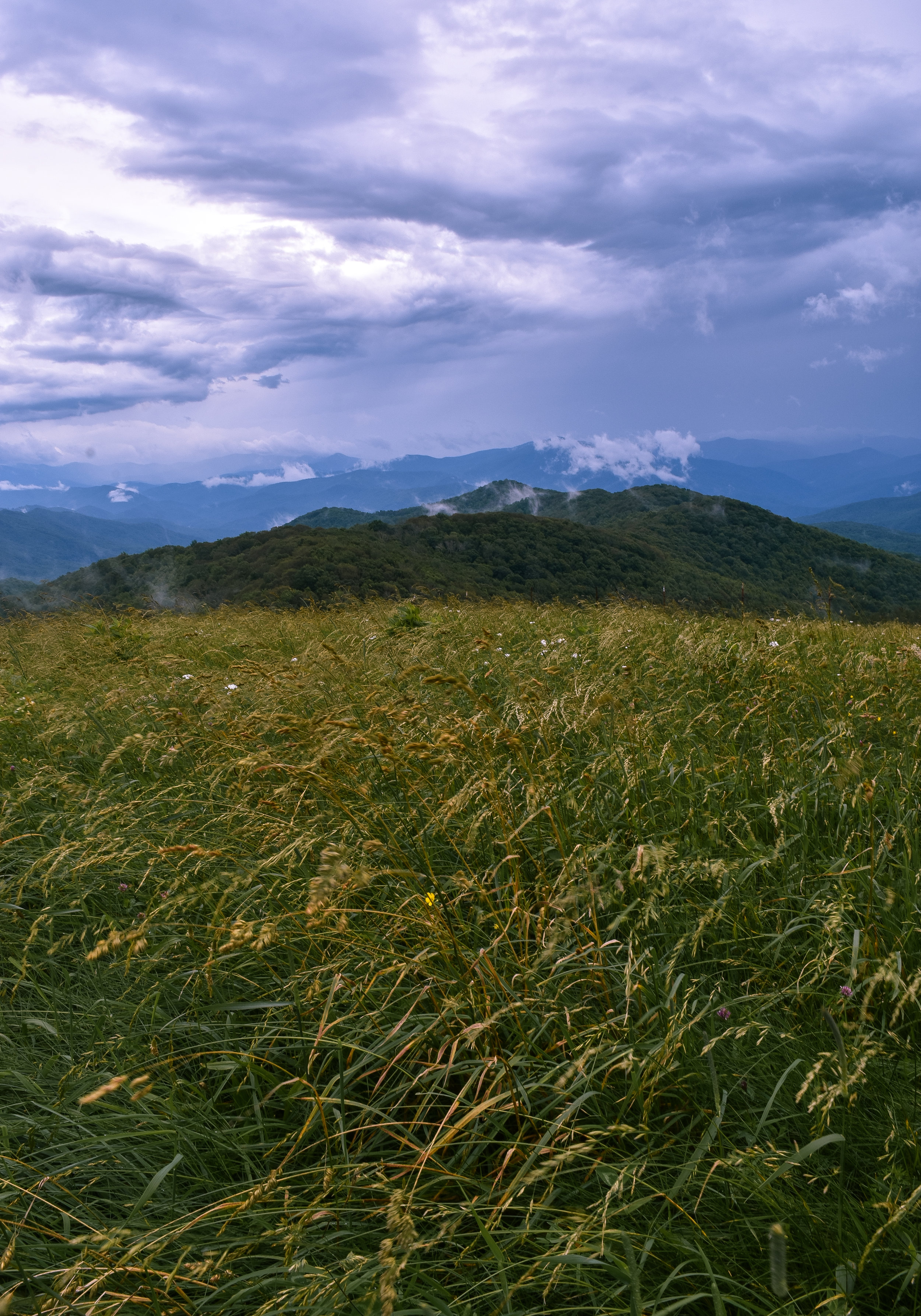 Watching the weather roll in atop Max Patch.