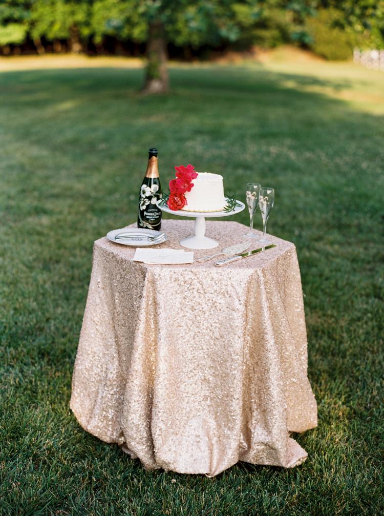 north-carolina-wedding-anniversary-raleigh-nc-8.jpg