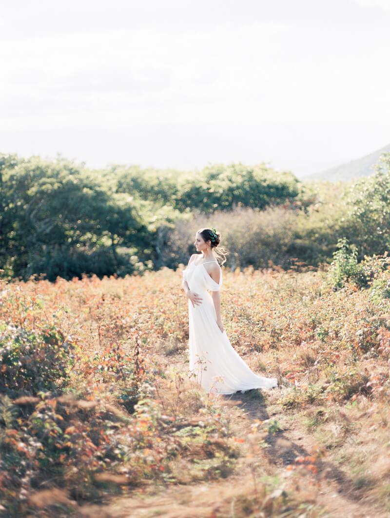 grecian-inspired-bridals-asheville-north-carolina-13.jpg