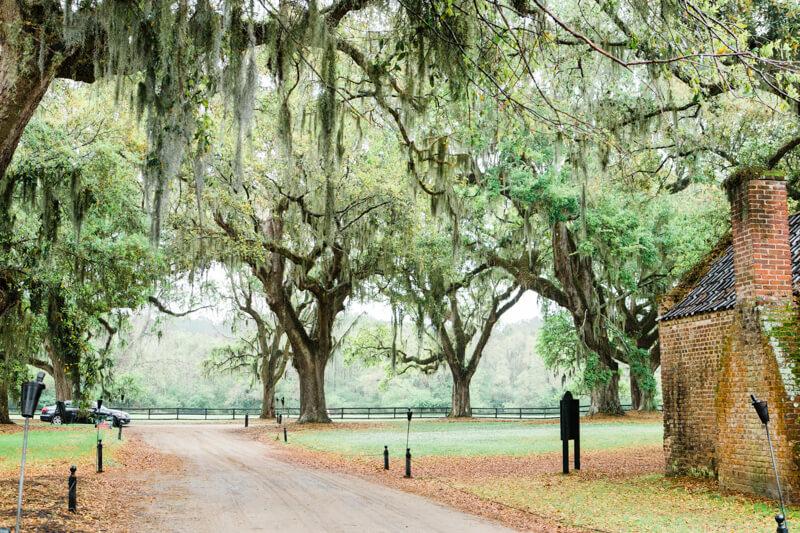 rainy-boone-hall-plantation-wedding-11.jpg