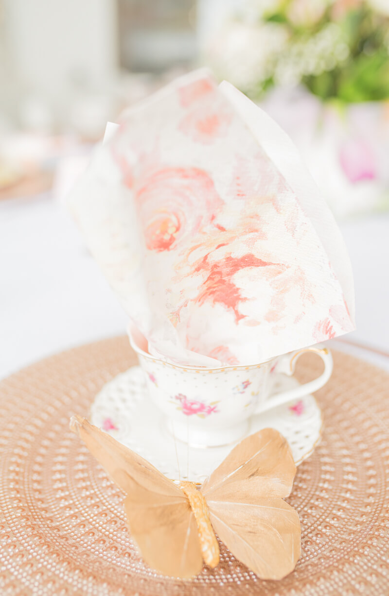 bridal-tea-party-in-lake-norman-nc-9.jpg